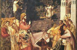 Размышление на Вербное Воскресенье